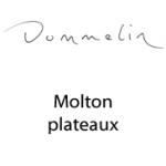 DommelinMoltonPlateaux